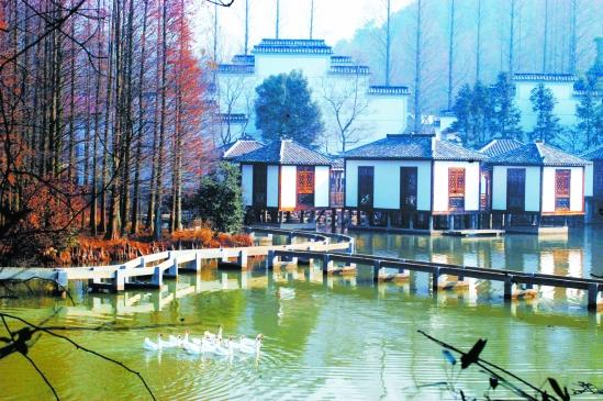 """邀请浙江大学编制了《安吉县""""中国美丽乡村""""建设图片"""