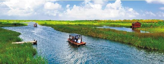 杭州湾攻略公园国家湿地v攻略毕棚沟图片